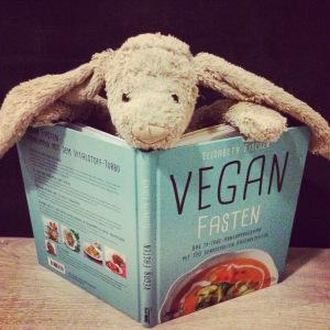 Mr Longear testet Vegan Fasten