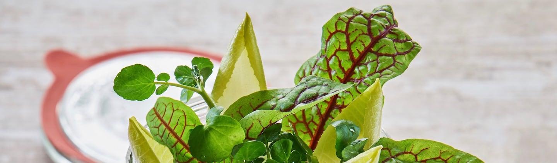 Rote Beete Salat